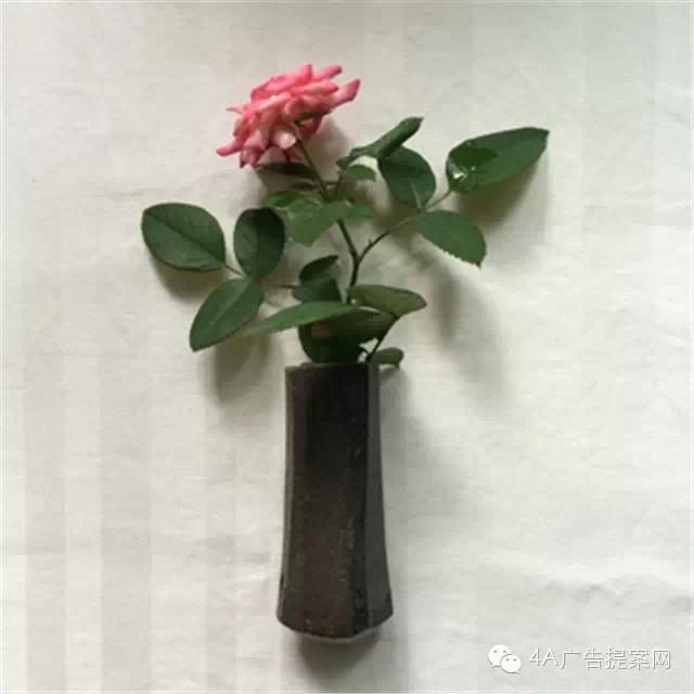 zhihu4